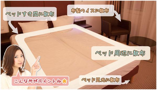 南京虫予防スプレー Bed-Bug Buster Travel ベッドにスプレーする場所
