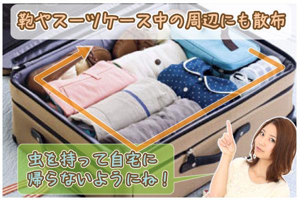 南京虫予防スプレー Bed-Bug Buster Travel 鞄やスーツケースにスプレーする場所